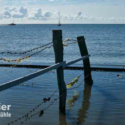 Zaun im Meer