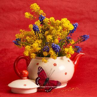 Teeblumen Kanne mit gelben Blüten © 2017 Ilona Weinhold-Wackernah - 000770