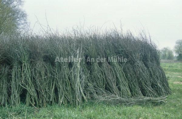 Bad Bederkesa Bündel mit Zweigen @ Im Moor ©  Ilona Weinhold-Wackernah (VG Bild-Kunst Nr.- 2218881) - 000715.jpg