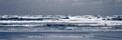 Juist Nordsee © 2015 Ilona Weinhold-Wackernah - 000197