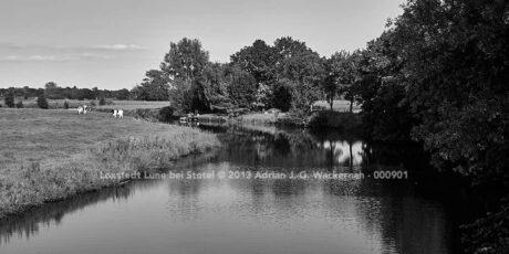 Loxstedt Lune bei Stotel © 2013 Adrian J.-G. Wackernah
