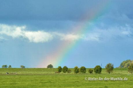 Regenbogen am Deich 2 © Adrian Wackernah (VG Bild-Kunst Nr.: 2219193) - https://atelier-an-der-muehle.de