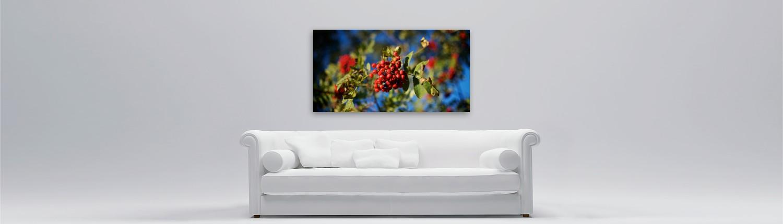 Musterbild Foto über Sofa