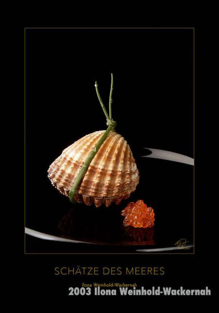Postkarte Kunst Acanthocardia Tuberculata © 2003 Ilona Weinhold-Wackernah