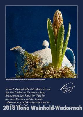 Postkarte Kunst Teeblumen Kanne mit Hyazinthe © 2017 Ilona Weinhold-Wackernah