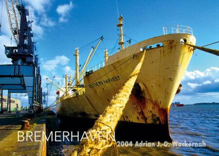 Postkarte Bremerhaven SOUTHERN HARVEST © 2004 Adrian J.-G. Wackernah