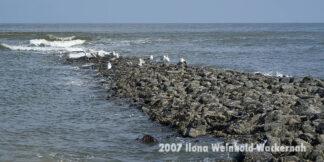 Fotografie Wangerooge Meer © 2007 Ilona Weinhold-Wackernah