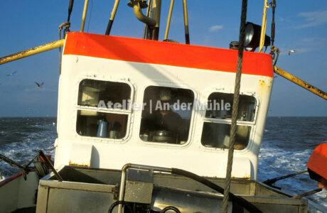 Fotografie Dorum Die Garnele und das Meer © 2004 Ilona Weinhold-Wackernah - 000416