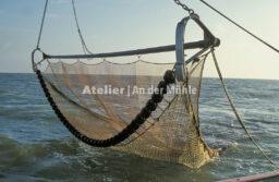 Fotografie Dorum Die Garnele und das Meer © 2004 Ilona Weinhold-Wackernah - 000434