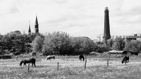 Fotografie Borkum Leuchtturm © 2003 Adrian J.-G. Wackernah - 001101