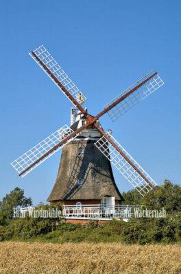 Fotografie Föhr Windmühle © 2004 Ilona Weinhold-Wackernah - 001114