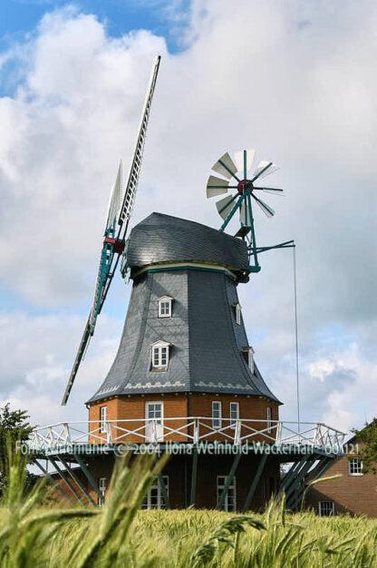 Fotografie Föhr Windmühle © 2004 Ilona Weinhold-Wackernah - 001121