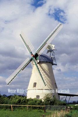 Fotografie Lüdingworth Weisse Mühle © 2004 Ilona Weinhold-Wackernah - 000757