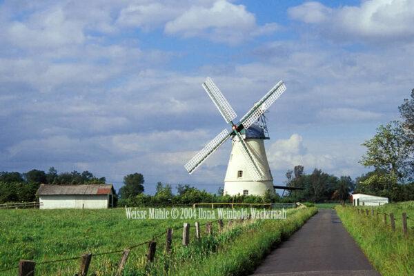 Fotografie Lüdingworth Weisse Mühle © 2004 Ilona Weinhold-Wackernah - 000760