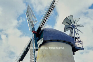 Fotografie Lüdingworth Weisse Mühle © 2004 Ilona Weinhold-Wackernah - 000761
