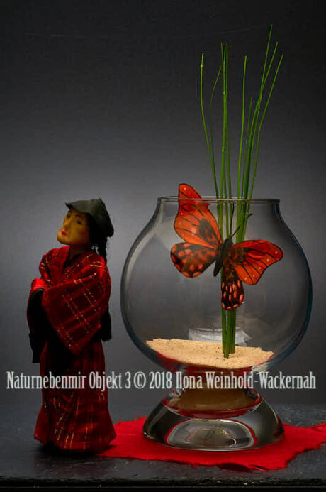 Fotografie Naturnebenmir Objekt 3 © 2018 Ilona Weinhold-Wackernah - 001088