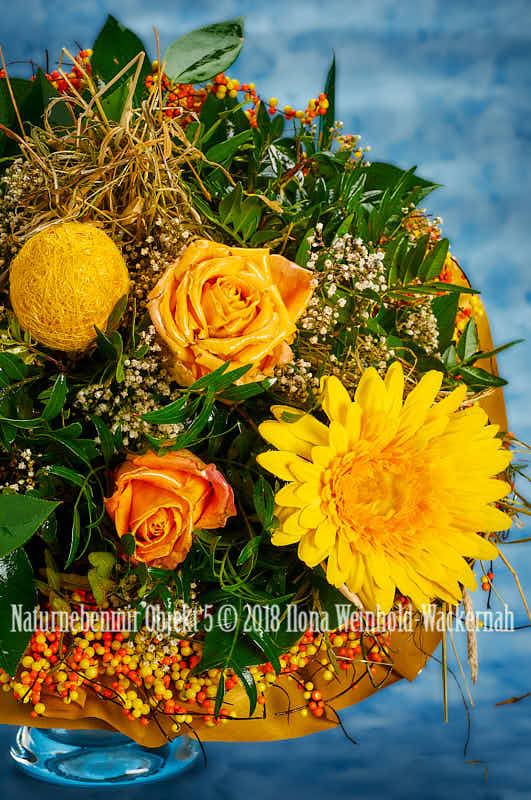 Fotografie Naturnebenmir Objekt 5 © 2018 Ilona Weinhold-Wackernah - 001090
