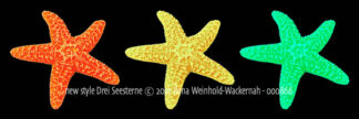 Fotografie new style Drei Seesterne © 2001 Ilona Weinhold-Wackernah - 000866
