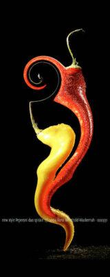 Fotografie new style Peperoni duo spirale © 2004 Ilona Weinhold-Wackernah - 000931