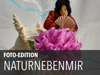 Edition 21 – Naturnebenmir