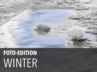 Edition 11 – Winter