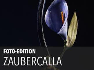 Edition 02 – ZauberCalla