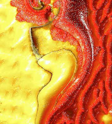 Fotografie Verzerrtes Zwei Peperoni Kreation © 2004 Ilona Weinhold-Wackernah