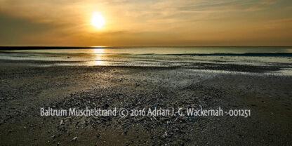 Produktbild Fotografie Baltrum Muschelstrand © 2016 Adrian J.-G. Wackernah - 001251