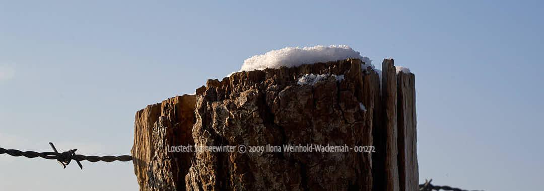Produktbild Fotografie Loxstedt Schneewinter © 2009 Ilona Weinhold-Wackernah - 001272