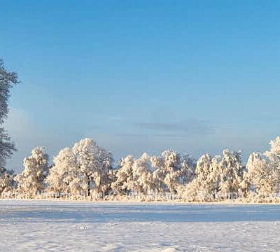 Produktbild Fotografie Loxstedt Winter in Nückel © 2010 Adrian J.-G. Wackernah - 001274
