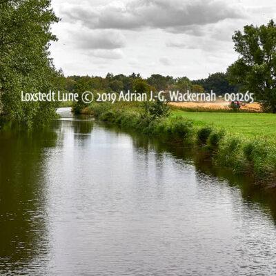 Produktbild Fotografie Loxstedt Lune © 2019 Adrian J.-G. Wackernah - 001265