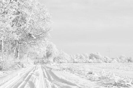 Produktbild Loxstedt Spuren im Schnee © 2010 Ilona Weinhold-Wackernah - 001285