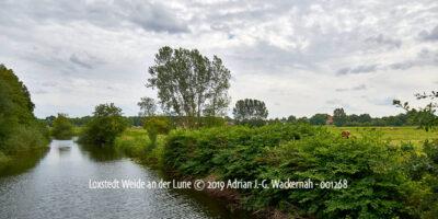 Produktbild Fotografie Loxstedt Weide an der Lune © 2019 Adrian J.-G. Wackernah - 001268
