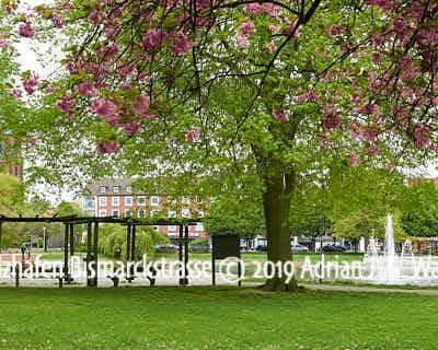 Produktbild Fotografie Bremerhaven Holzhafen Bismarckstrasse © 2019 Adrian J.-G. Wackernah - 001217
