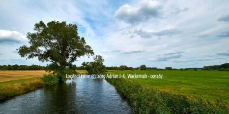 Produktbild Fotografie Loxstedt Lune © 2019 Adrian J.-G. Wackernah - 001267