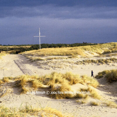 Produktbild 001419 Amrum © 2004 Ilona Weinhold-Wackernah