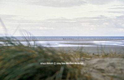 Produktbild 001422 Amrum © 2004 Ilona Weinhold-Wackernah