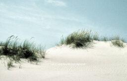 Produktbild 001423 Amrum © 2006 Ilona Weinhold-Wackernah
